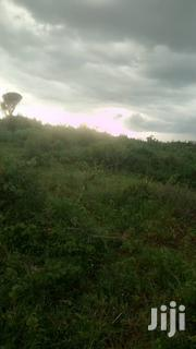 25acres of Land in Kayunga Kayonza at 3.5M Per Acre | Land & Plots For Sale for sale in Central Region, Kampala