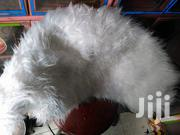Pure White Dashboard Cover | Vehicle Parts & Accessories for sale in Central Region, Kampala