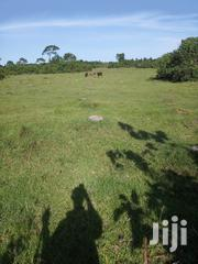 Farmland for Sale | Land & Plots For Sale for sale in Central Region, Masaka