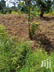 Plot Of Land At Nakifuma Town Council Mukono For Sale | Land & Plots For Sale for sale in Central Region, Mukono