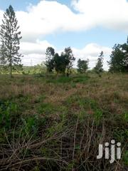 Cheap Fertile Land on Sale in Luweero District | Land & Plots For Sale for sale in Central Region, Kampala