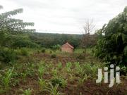 Cheap Fertile 50 by 100 Fts on Quick Sale Near Kampala Universty | Land & Plots For Sale for sale in Central Region, Kampala