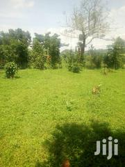 Land for Sale in Naggamba,Busukuma   Land & Plots For Sale for sale in Central Region, Wakiso