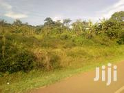 2 Acres, Shs 120M for Both, Mailoland Touching Tarmac, Nkokonjeru Town | Land & Plots For Sale for sale in Central Region, Mukono
