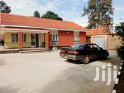 3 Bedrooms House at Kansanga | Houses & Apartments For Rent for sale in Central Region, Kampala