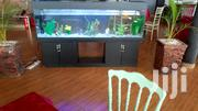 Aquariums With AQUA 2000 | Pet's Accessories for sale in Central Region, Kampala