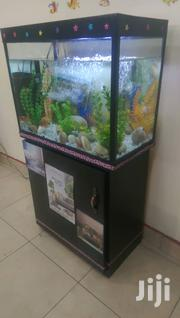 Aquariums In Uganda | Pet's Accessories for sale in Central Region, Kampala