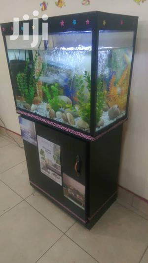 Aquariums In Uganda