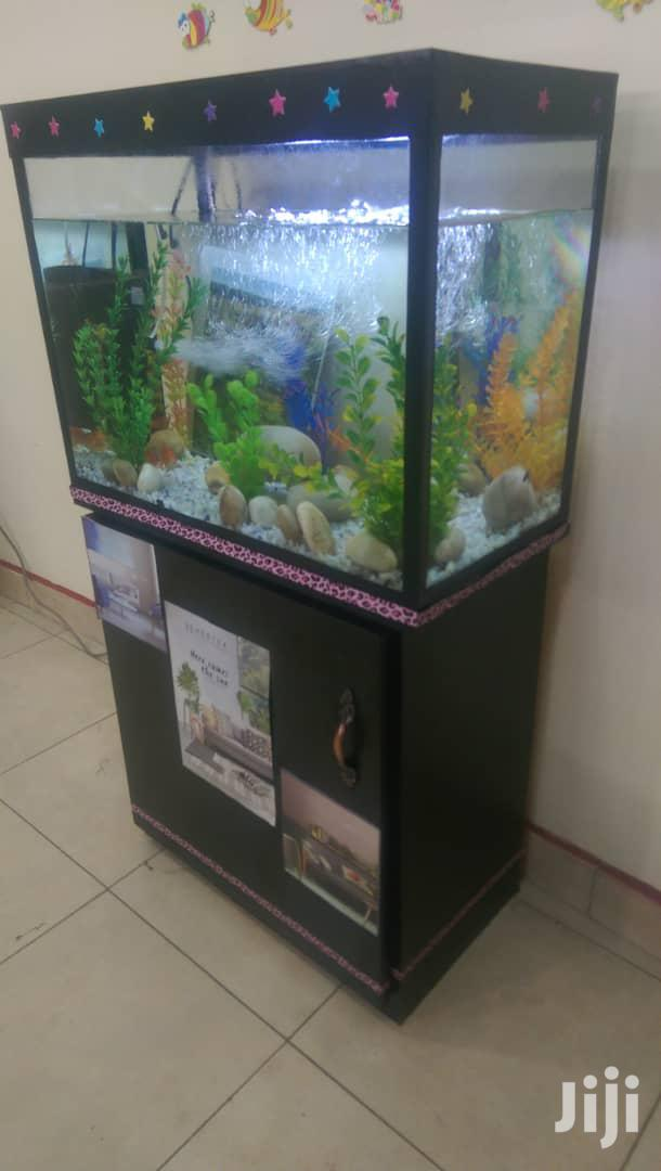 Archive: Aquariums In Uganda