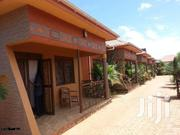 Kisasi Executive Self Contained Double for Rent at 350K | Houses & Apartments For Rent for sale in Central Region, Kampala