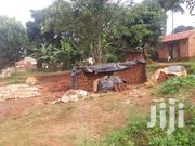 18 Decimals on Quick Sale in Salaama Munyonyo With Title at 150m Shs | Land & Plots For Sale for sale in Central Region, Kampala