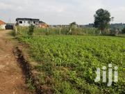 50*100ft Plots In Kira-mulawa | Land & Plots For Sale for sale in Central Region, Wakiso