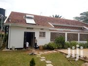 House for Rent at Munyonyo   Houses & Apartments For Rent for sale in Central Region, Kampala