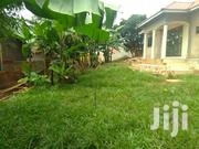 Verybig Plot With Many Houses on Quicksale Heart of Makindye Near Main | Houses & Apartments For Sale for sale in Central Region, Kampala