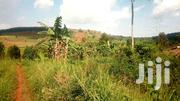 🇺🇬 *_ENTEBBE/MASAKA ROAD BULWANYI: 3 Acres @ 40m/Acre_* 🇺🇬 | Land & Plots For Sale for sale in Central Region, Wakiso