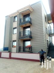 Mbuya Hill Executive Single Bedroom House for Rent | Houses & Apartments For Rent for sale in Central Region, Kampala