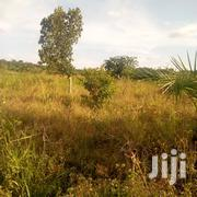 FERTILE FARMLAND 2acres at 32m | Land & Plots For Sale for sale in Central Region, Kampala