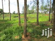 For SALE: 7 Acres of Titled Prime Land in Iganga Municipality | Land & Plots For Sale for sale in Eastern Region, Iganga