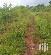 This Plot Land Is in Wanyonyi Mukono District 1km From the Main Road. | Land & Plots For Sale for sale in Central Region, Mukono