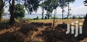 Organised Estate Plots by the Lake in Kisubi, Entebbe at 55m | Land & Plots For Sale for sale in Central Region, Wakiso