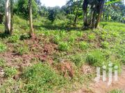 Plot Of Land At Matugga For Sale | Land & Plots For Sale for sale in Central Region, Wakiso