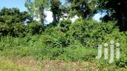 45 Acres Agricultural Land For Sale Per Acre At Mityana Namutamba | Land & Plots For Sale for sale in Central Region, Kampala