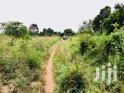 5 Acres of Private Mailo at Sentema for Sale, 30mins Drive From Kampal | Land & Plots For Sale for sale in Central Region, Kampala