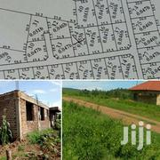 NASUTI-NSAMBWE 100ftby100ft Plots | Land & Plots For Sale for sale in Central Region, Mukono