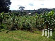 Land In Entebbe Buwaya For Sale | Land & Plots For Sale for sale in Central Region, Wakiso
