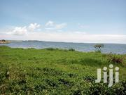 10acres of Land for Sale Located at Kalangala Island One | Land & Plots For Sale for sale in Central Region, Kampala