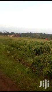 🇺🇬MITYANA ROAD BUJJUKO: 30 Acres @ 25m/Acre🇺🇬_ | Land & Plots For Sale for sale in Central Region, Wakiso