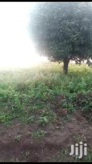 🇺🇬MITYANA ROAD KYAKATEBE: 165 Acres @ 3.5m/Acre🇺🇬_ | Land & Plots For Sale for sale in Central Region, Wakiso