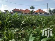 Plot On Sale!! Kira- Nsasa 100m 100x100ft | Land & Plots For Sale for sale in Central Region, Kampala