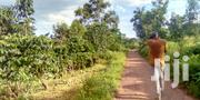 Semeto Nakaseke 60 Acres on Sale 5m Per Acre With Coffee Plantation | Land & Plots For Sale for sale in Central Region, Wakiso