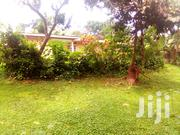 A 3 Bedroom Bungalow in Mbuya | Houses & Apartments For Rent for sale in Central Region, Kampala