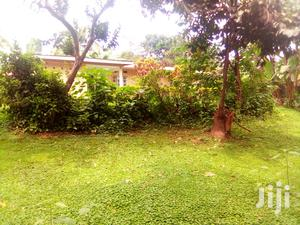 A 3 Bedroom Bungalow in Mbuya