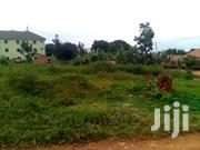 Must-See 50*100ft Plots for Sale in Mukono Kyetuume at 25m | Land & Plots For Sale for sale in Central Region, Mukono