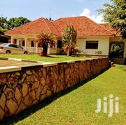 Buziga Posh Mansion On Sell | Houses & Apartments For Sale for sale in Central Region, Kampala