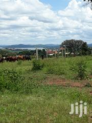 A New Estate at 4 Plots in Busabala Measuring 7 Decimals and Over | Land & Plots For Sale for sale in Central Region, Kampala