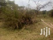 460 Titled Acres In Maddu Gomba Selling Off 50 Plus | Land & Plots For Sale for sale in Western Region, Kisoro