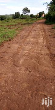 Gayaza Dundu 200meters Off Tarmac | Land & Plots For Sale for sale in Central Region, Kampala