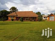 Jinja 1960'S Old Colonial Bungalow for Sale on 1.35acre Land | Houses & Apartments For Sale for sale in Eastern Region, Jinja