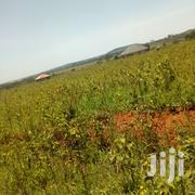 New Bukasa Ssentema Rd Site 50x100 Plots With Titles | Land & Plots For Sale for sale in Central Region, Wakiso