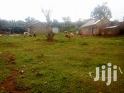 Plot Of Land At Mpigi For Sale   Land & Plots For Sale for sale in Central Region, Mpigi