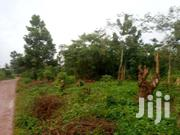 1 Acre Of Land For Sale In Zirobwe At 6m | Land & Plots For Sale for sale in Central Region, Kayunga