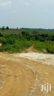 24decimals/100ft*100ft At 36millions | Land & Plots For Sale for sale in Central Region, Mukono