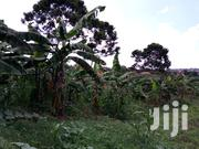 Plot for Sale in Kulambilo Kisaasi | Land & Plots For Sale for sale in Central Region, Kampala