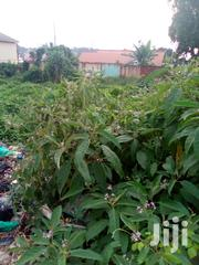 Namugongo Jogo Plots on Sale at 35m and 25m, Dont Be Cheated.   Land & Plots For Sale for sale in Central Region, Wakiso