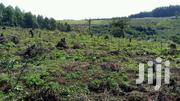 2 Square Miles in Fort Portal at 3.5m Each Acre | Land & Plots For Sale for sale in Western Region, Kabalore