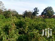 Gayaza Dundu Plots at 15m | Land & Plots For Sale for sale in Central Region, Wakiso